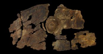 2,300-Year-Old Bark Shield Showcases a Previously Unknown Iron Age Technology