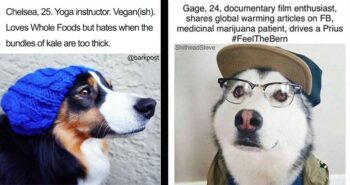 Fifteen Dog Tinder Bios That Make Fun Of Millennial Stereotypes