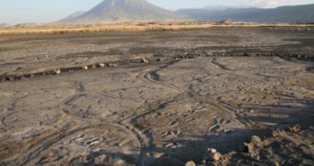 Footprints record a snapshot of life in ancient Tanzania