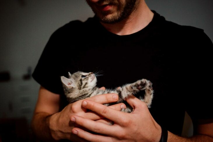 Study Shows Women Don't Want To Date Men With Cats