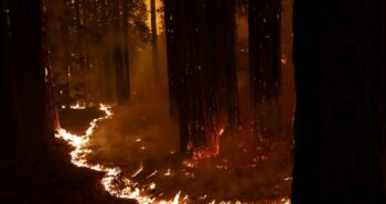 Firestorms kindled by lightning displace tens of thousands in California – Reuters Africa