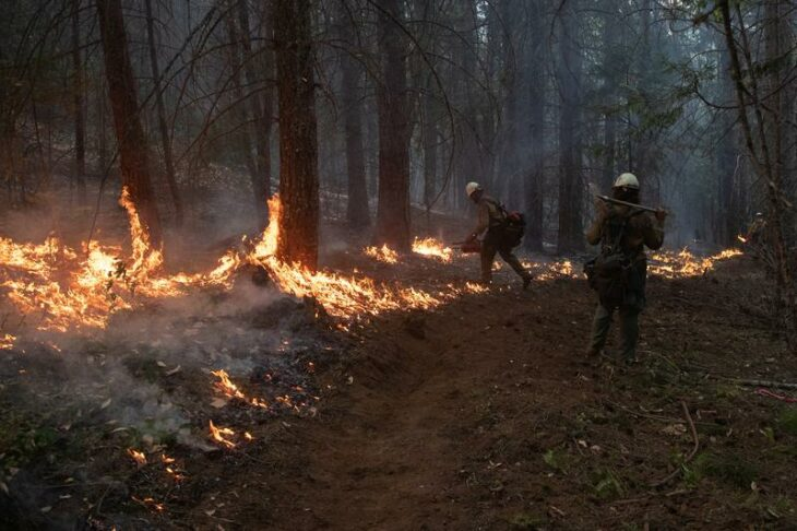 Crews battle wildfires in U.S. West as smoke travels the world – Reuters UK