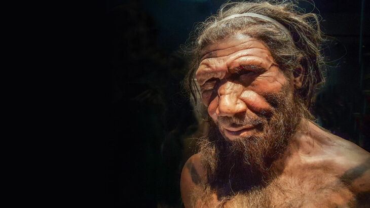 How Neanderthals lost their Y chromosome